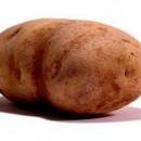 Исследована «генетическая программа» картофеля